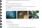 Hospitalist Survey Report Preview - Introduction